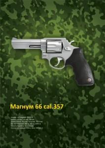 маг 66